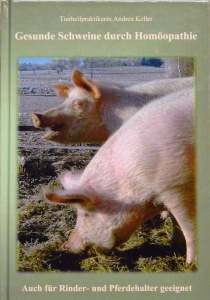 Gesunde Schweine durch Homöopathie