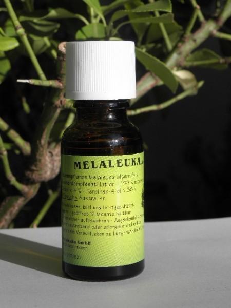 Melaleuka Teebaumöl