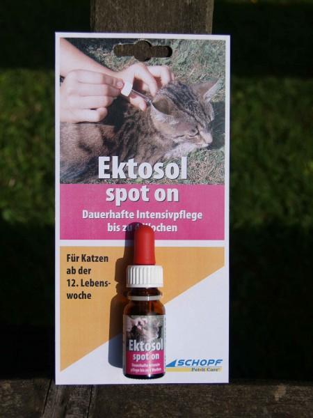 Ektosol spot on Katze